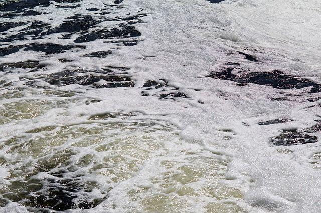 Miles de peces muertos en un río de Francia por el vertido de una fábrica de Nestlé