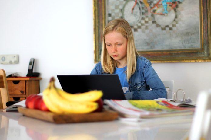 Consejos para no sufrir ciberataques con la educación online