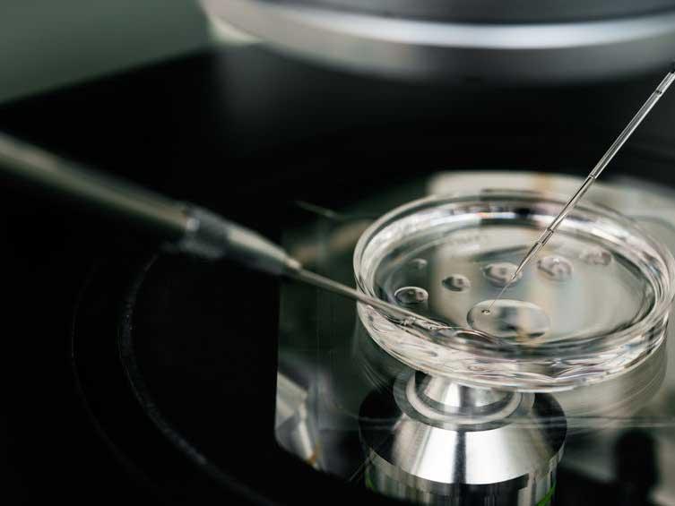 Equipo tecnológico para la fecundación in vitro