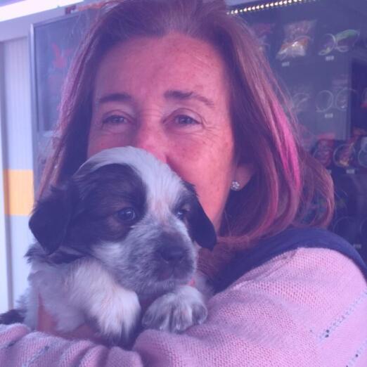 Carmen Manzano, presidenta de las Asociaciones de Animales y Plantas de Málaga