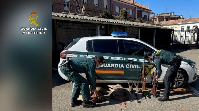 La Guardia Civil investigó a más de 300 personas por delitos contra la biodiversidad en 2020