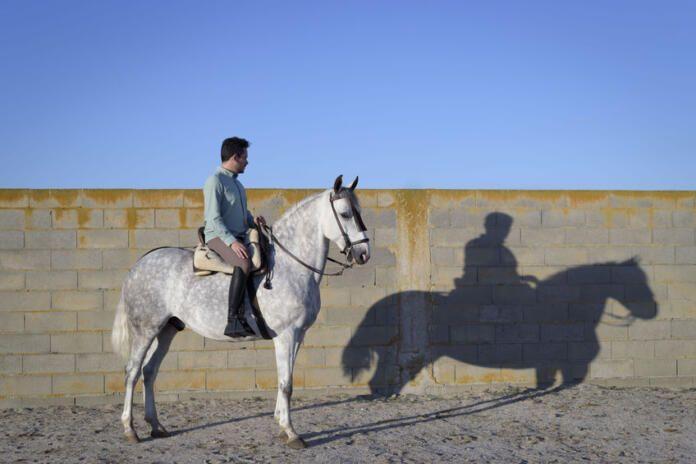 Los hombres y los caballos sufren el virus del Nilo, pero no lo transmiten