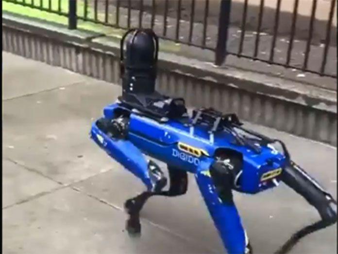 Perro policía robot americano asesinado