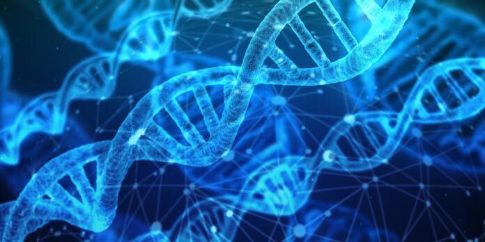 ADN, material genético